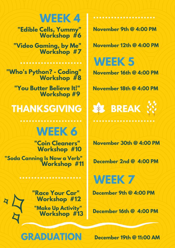 STEM Timeline 2